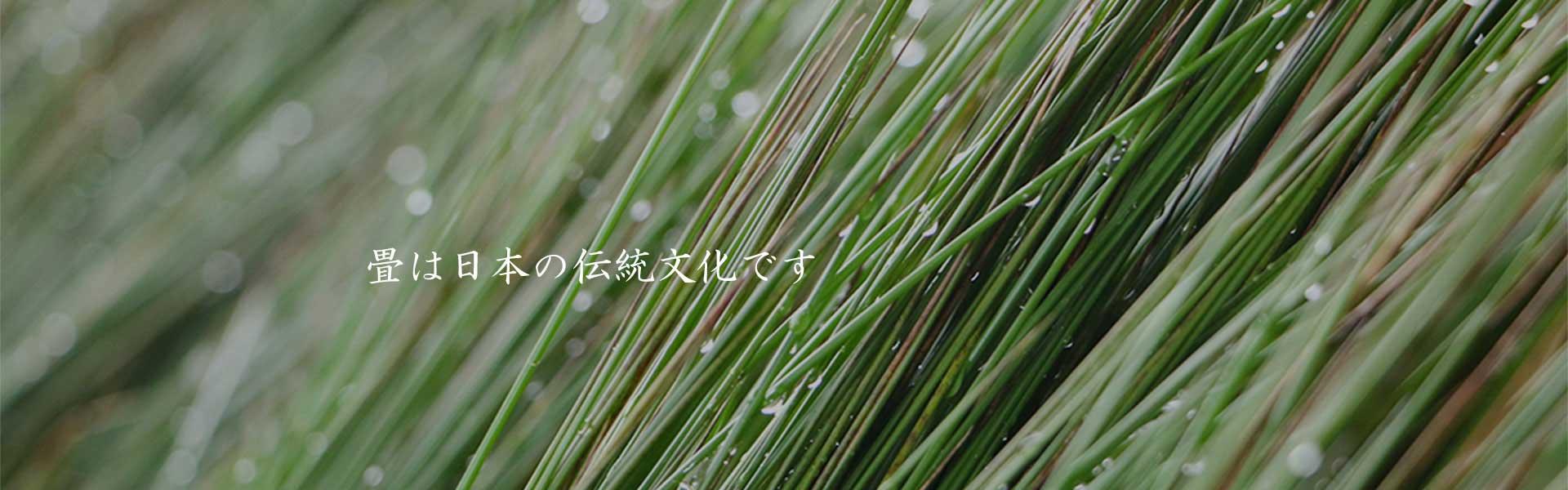 tatami-japan